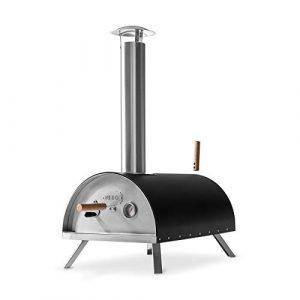 forno pizza ibrido