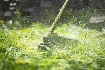 Taglio erba: dal primo all'ultimo taglio, i trucchi degli esperti